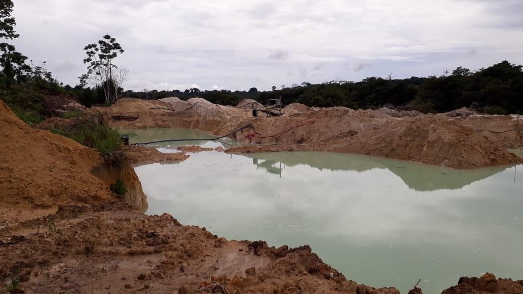 8ª fase da Operação 'Amazônia Viva' flagra garimpos ilegais, faz apreensões e prisões na região oeste do Pará