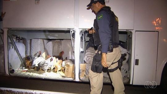 Ônibus clandestino é multado ao ser flagrado com estrangeiros sem documentos e galinhas