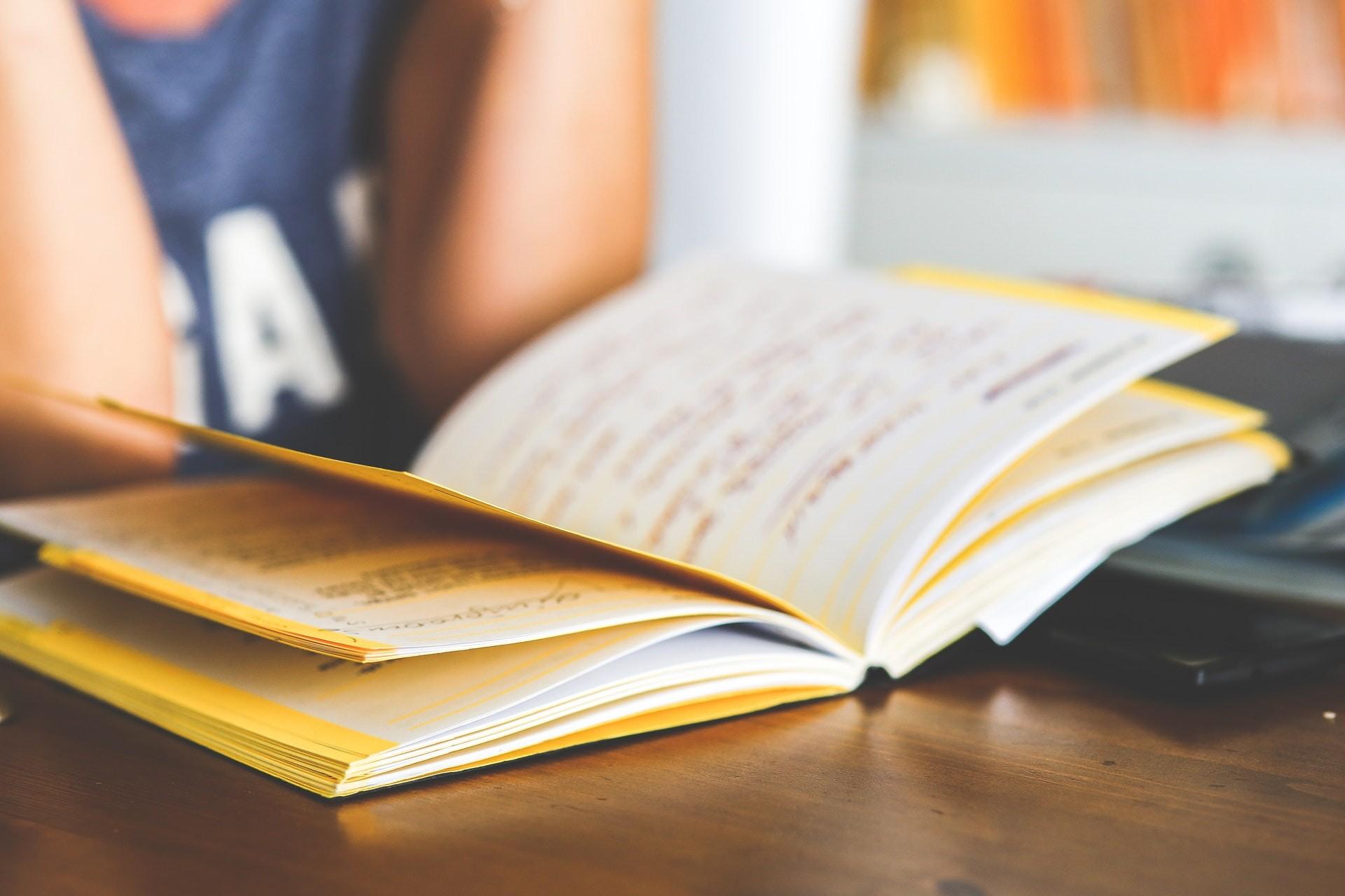 Escola bilingue e escola internacional: tem diferença? (Foto: Pexels)