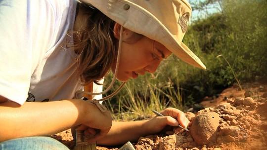 Fóssil achado há 6 anos no RS é de nova espécie pré-histórica, diz estudo