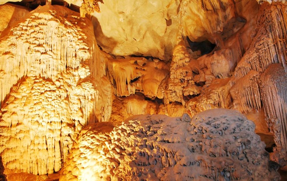 Imagens de dentro da gruta de Ubajara, no Ceará. — Foto: Nelson Yoneda/ICMBio
