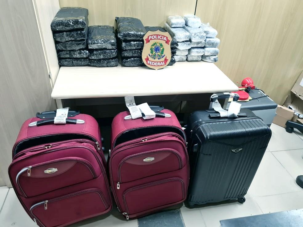 Grupo desembarcou no Aeroporto Internacional de Natal com 47 quilos de maconha — Foto: Polícia Federal/Divulgação