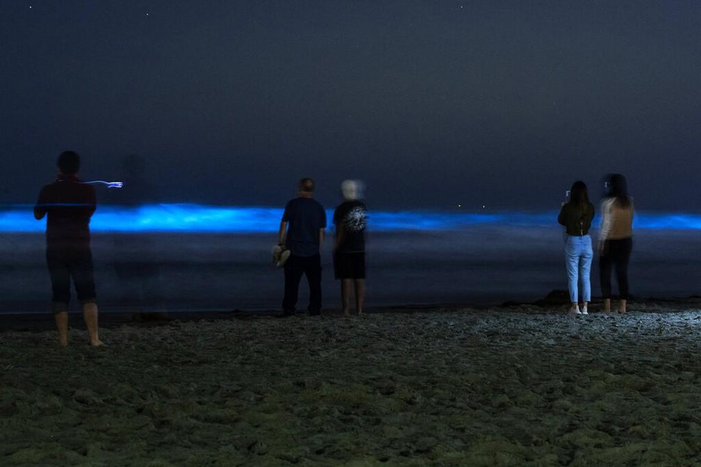 Pessoas observam as ondas azul-brilhantes em praia da Califórnia enquanto tentam manter uma distância segura em praia que está fechada por conta de medidas de contenção da propagação do novo coronavírus a  se esforçar para diminuir a propagação do novo coronavírus; as ondas adquirem esta cor por conta da bioluminescência de algas que habitam o Oceano Pacífico — Foto: Gregory Bull/AP