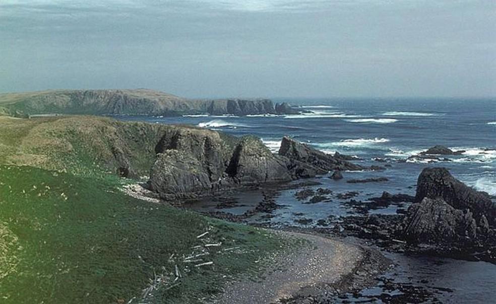 Quando Jim Estes retornou à Ilha Amchitka, ficou assustado com o que viu (ou melhor, com o que não viu) — Foto: BBC