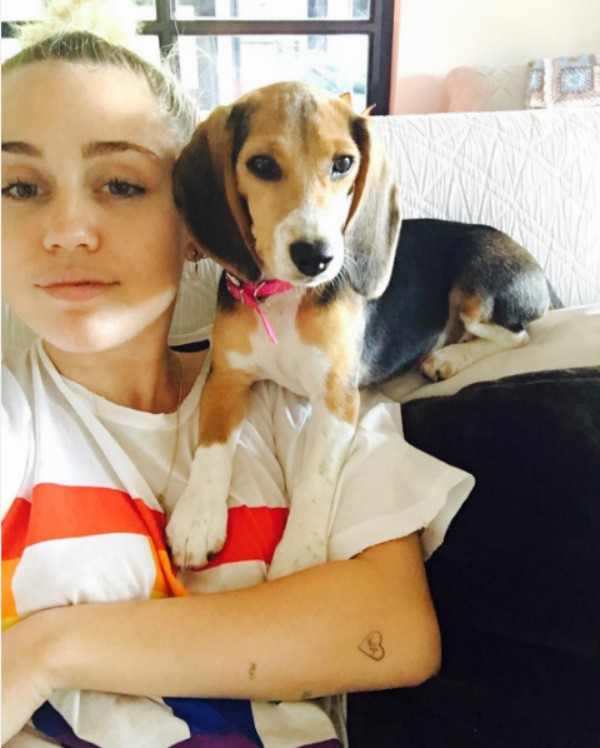 A cantora MIley Cyrus com a cachorrinha Barbie (Foto: Instagram)