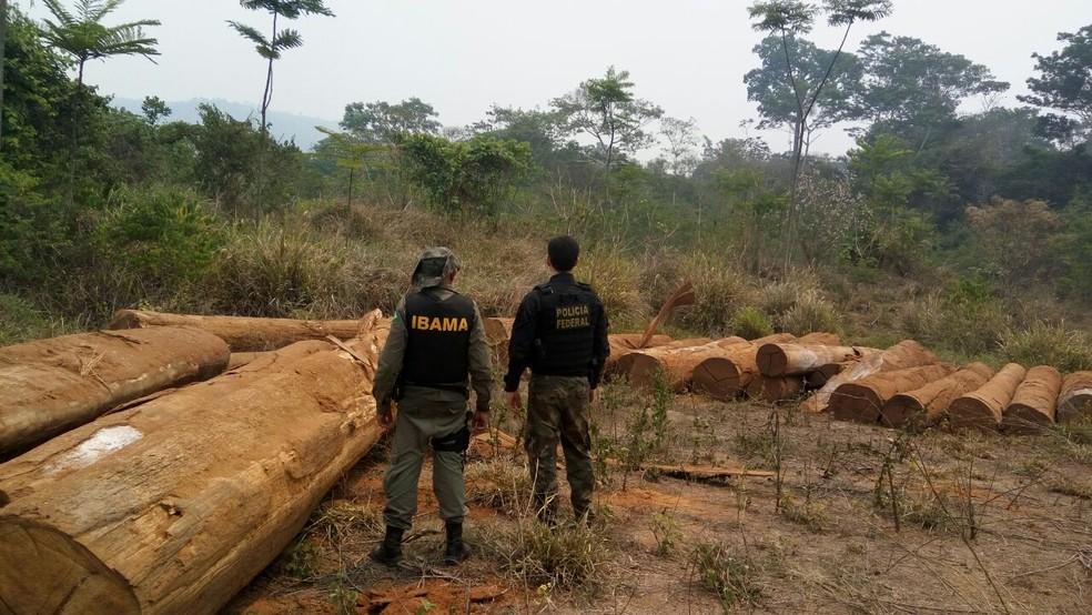 Operação Warã foi realizada em Ji-Paraná, Porto Velho e Ministro Andreazza (Foto: Polícia Federal/Divulgação)