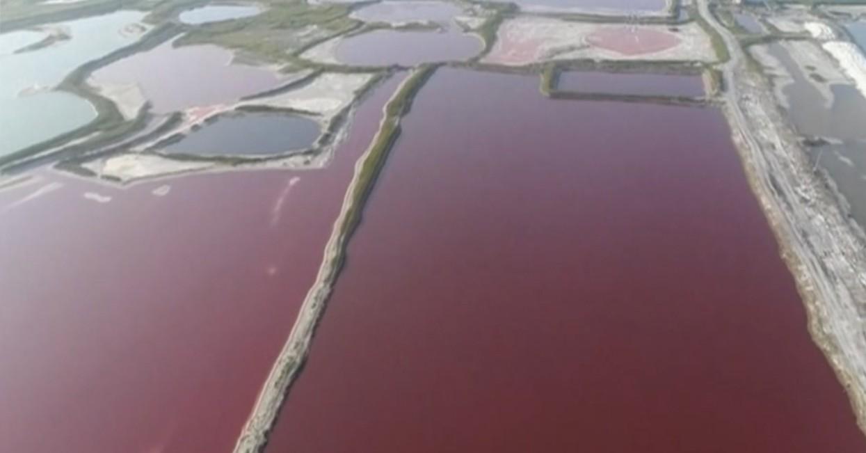 - lago - Lago na China muda de cor por causa de forte calor