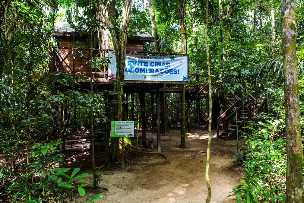 Trilha no Bioparque da Amazônia — Foto: PMM/Divulgação