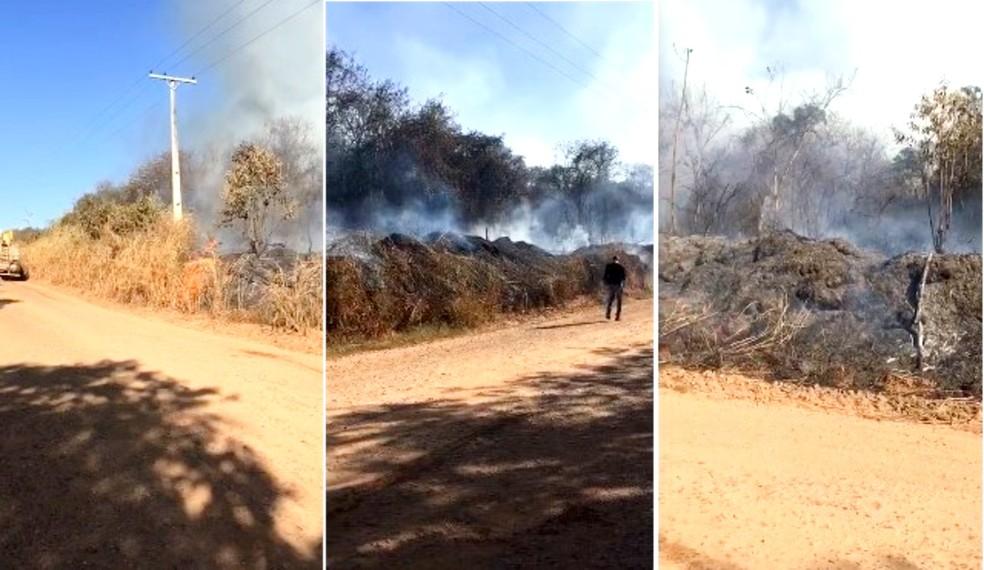Incêndio que começou em veículo consome cerca de 30 mil m² de estação ecológica em Anhembi — Foto: Arquivo pessoal
