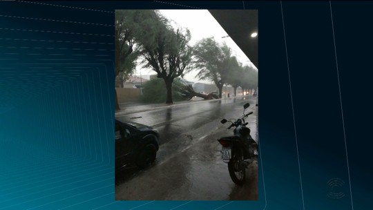 Chuva e ventos fortes derrubam árvores e antena de rádio da Seds em Patos, no Sertão da PB