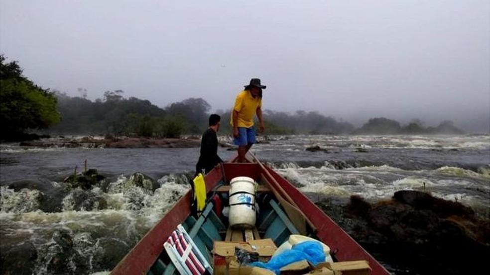 Partindo da cidade de Laranjal do Jari, uma equipe de 30 pessoas percorreu um trajeto de aproximadamente 220 km por rio e 10 km por terra até localizar a árvore mais alta da Amazônia — Foto: Divulgação/Jhonathan dos Santos