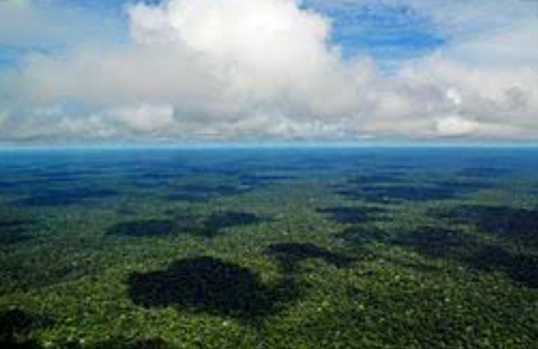 Amazônia na pauta do governo americano