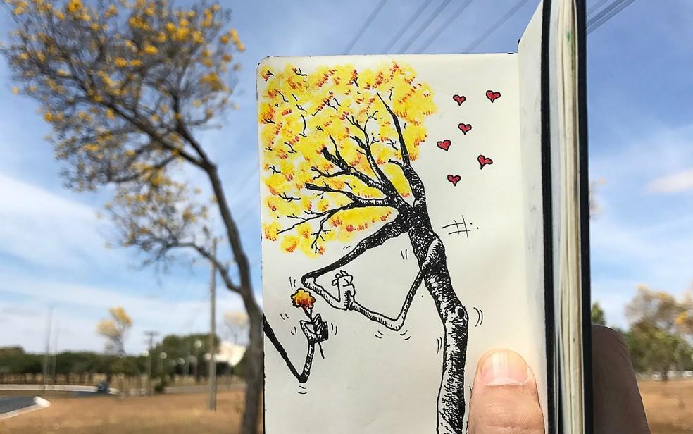 Arte de Toninho de Souza está à venda na exposição 'Arte que salva', em Brasília — Foto: Toninho de Souza/Divulgação