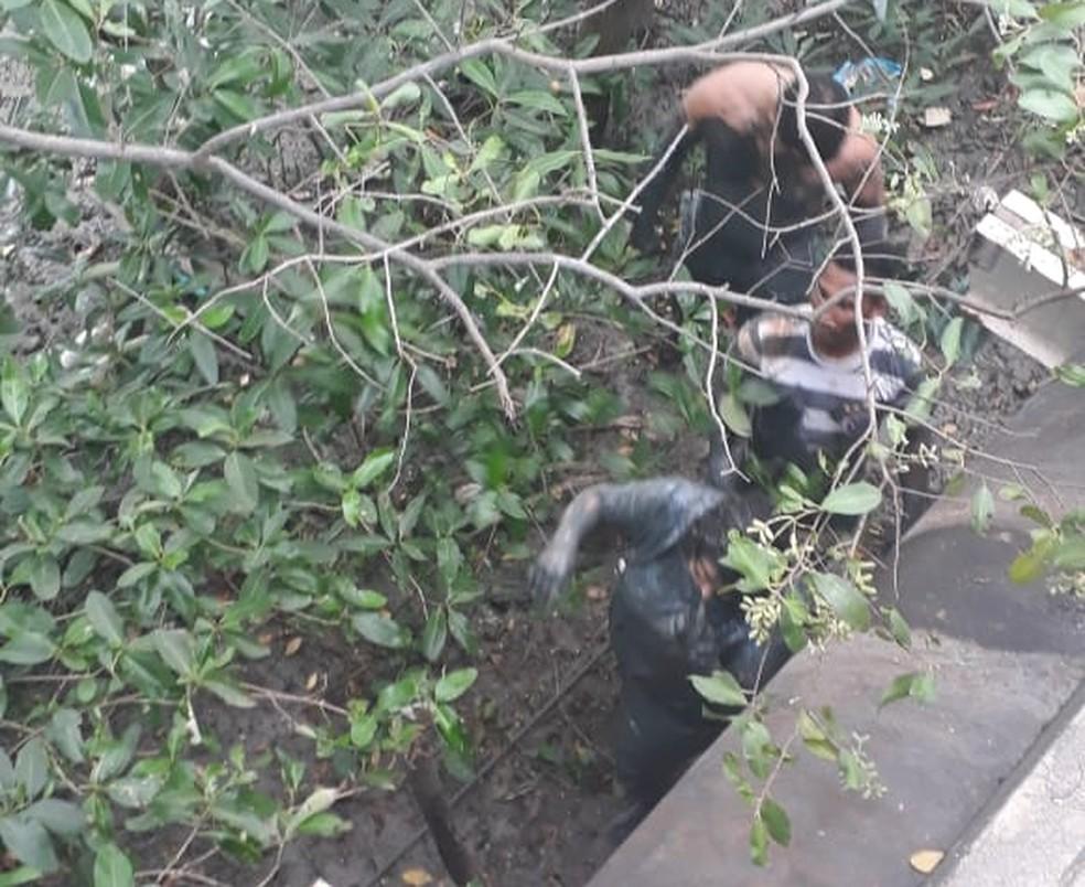 Sarah Catarine Maia Ferreira foi resgatada por José Ribamar, que abriu a porta do carro e a retirou da água — Foto: Reprodução/TV Mirante