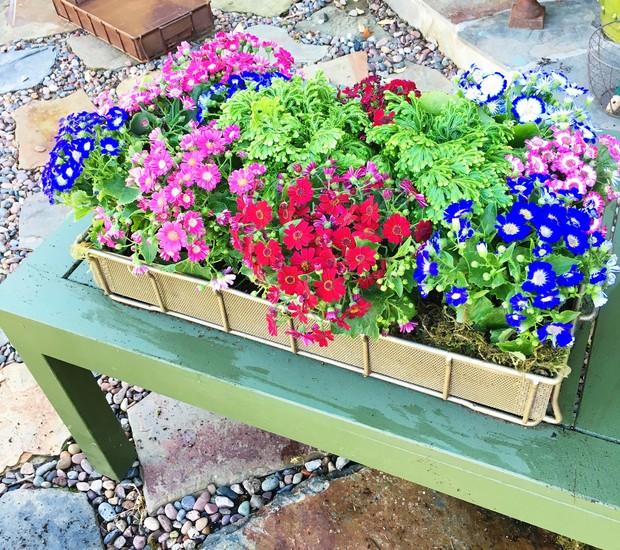Não esqueça de regar a sua caixa de flores (Foto: Cococozy/Reprodução)