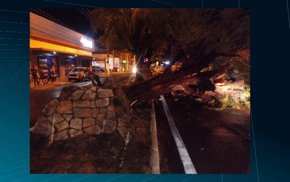 Chuva com ventos fortes derruba árvores, muro e até antena de rádio da Polícia Militar, em Patos, na PB — Foto: Reprodução / TV Paraíba