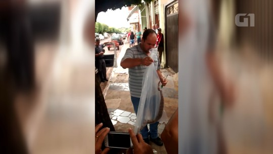 Moradores resgatam cobra enrolada em motor de motocicleta em Santa Albertina; vídeo