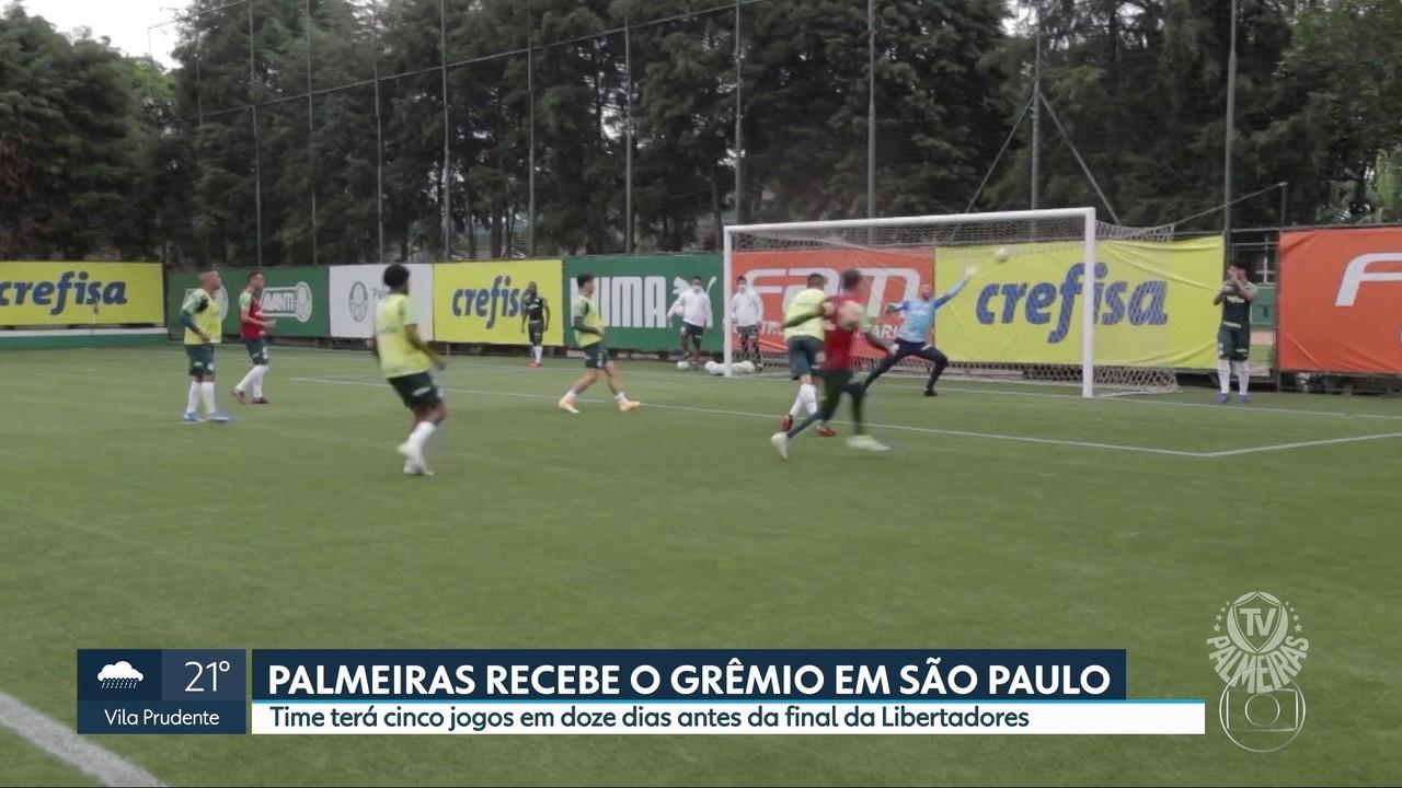 Palmeiras enfrenta o Grêmio pelo Brasileirão