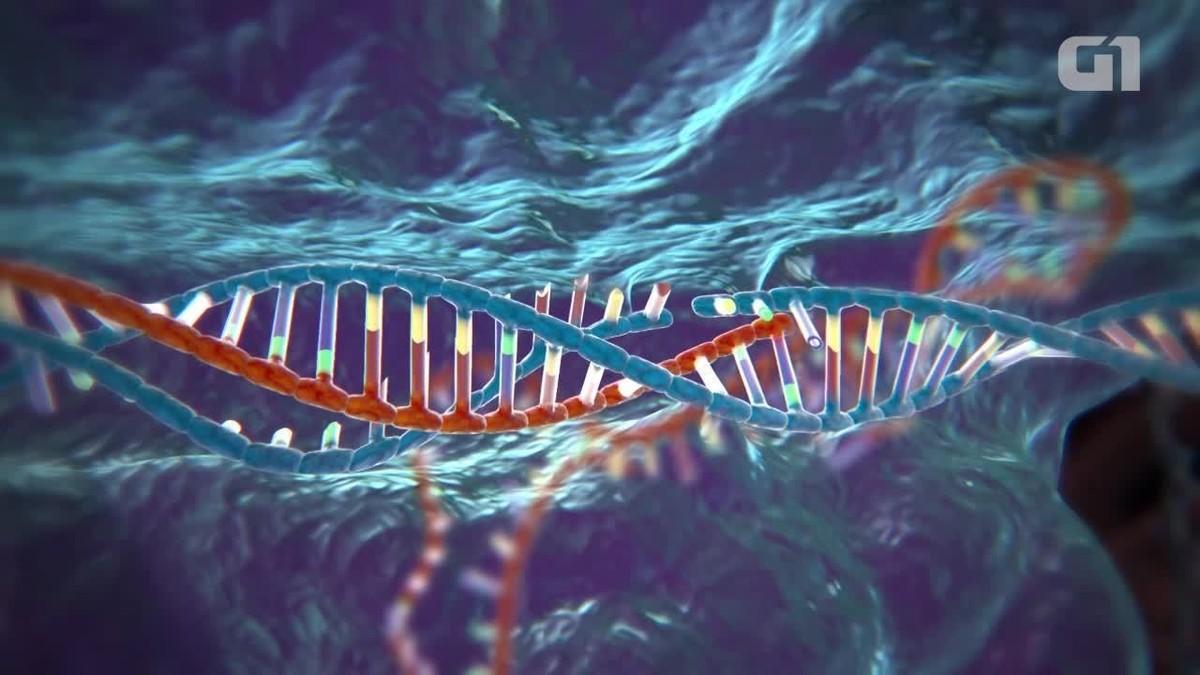 10 avanços e 1 promessa da técnica Crispr de edição do DNA
