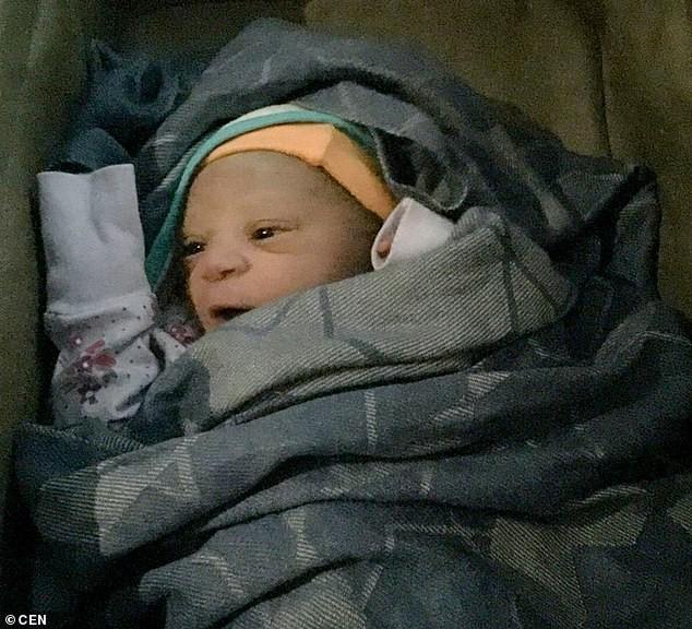 O pequeno Bennel que nasceu durante voo do Congo para a Turquia (Foto: Divulgação)