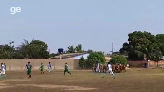 Gêmeos no gol de Neymar, boiada no campo e mais...Veja o que marcou 2018 no esporte de RO
