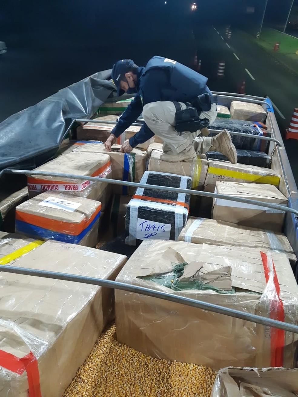 Contrabando estava escondido em uma carga de milho — Foto: PRF/Divulgação