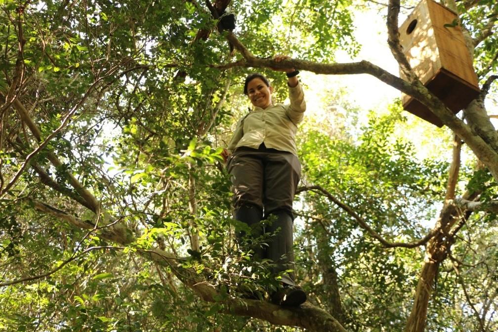 Gabriela Cabral Rezende, pesquisadora que atua no Programa de Conservação do Mico-leão-preto — Foto: Leonardo Silva