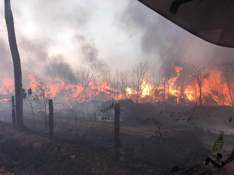 Incêndio na tarde dessa quinta-feira (13) destruiu uma área de aproximadamente 72 mil metros em um lixão em Sorriso — Foto: Corpo de Bombeiros de Mato Grosso/Assessoria