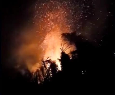 Em menos de dez meses, número de incêndios ambientais na região de Foz do Iguaçu quase atinge total registrado em todo o ano de 2019