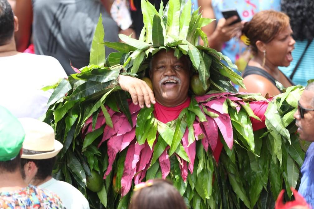Nas tradicionais cores verde e rosa, homem se fantasia de 'mangueira' — Foto: Aldo Carneiro/Pernambuco Press