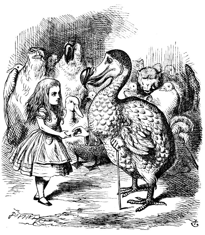 O personagem Dodô em Alice no País das Maravilhas (Foto: Wikimedia/John Tenniel)