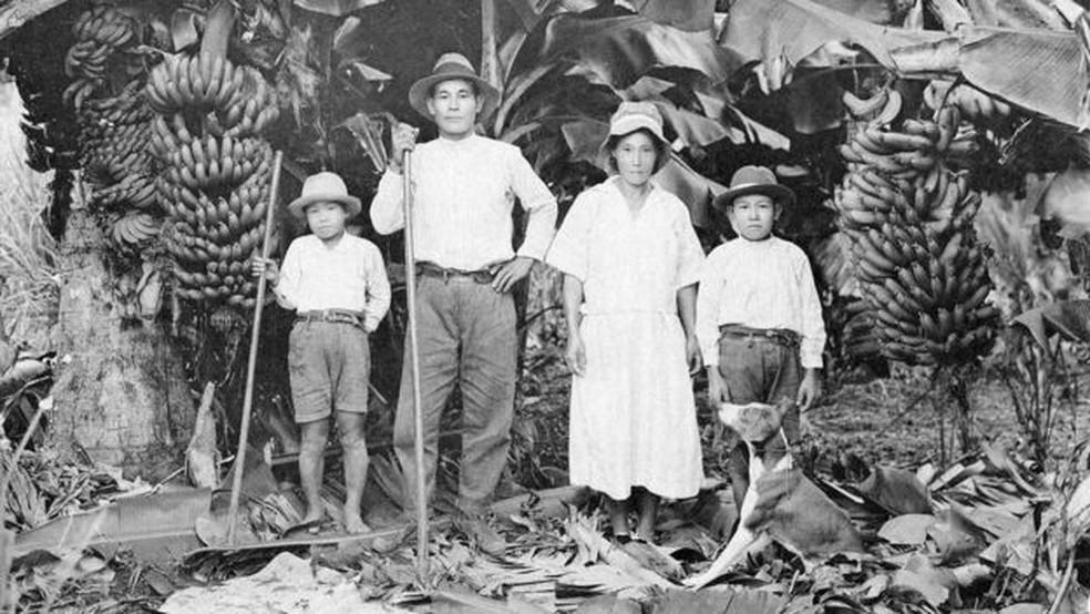 No início da imigração japonesa, soja não era produto prioritário em termos econômicos - mas teve cultivo em pequena escala para consumo familiar — Foto: Acervo do Museu Histórico da Imigração Japonesa no Brasil