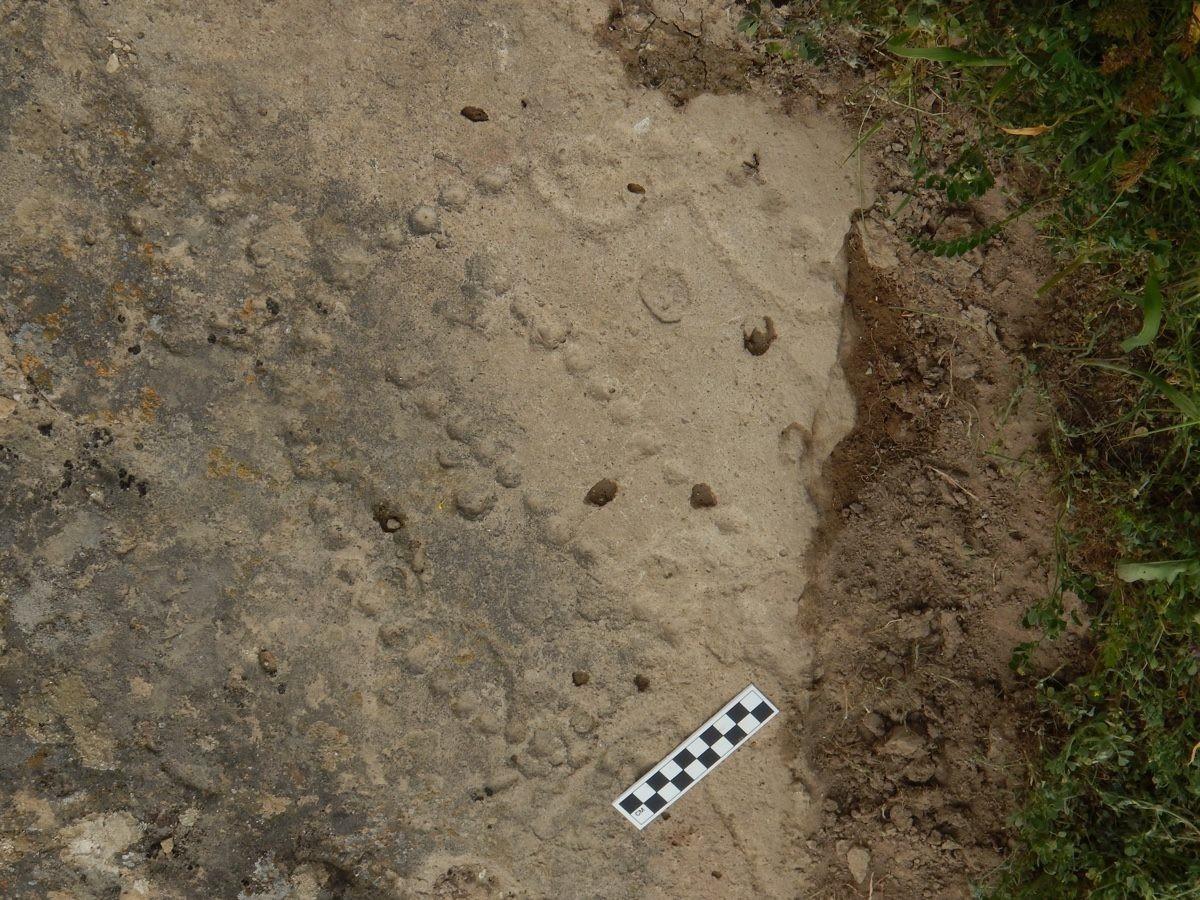 Jogo de tabuleiro de 4.000 anos é encontrado (Foto: Walter Crist/Gobustan National Park)