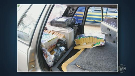 Polícia apreende 366 kg de maconha que seriam distribuídos na região de Campinas