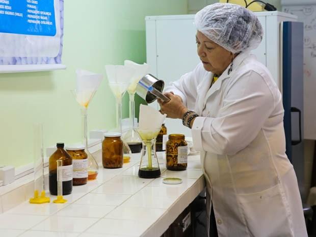 Pesquisadora da UFRN utilizou bioativo da folha do Melão de São Caetano para desenvolver remédio homeopático (Foto: Wallacy Medeiros)