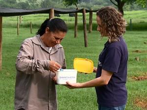 Pesquisadores usam homeopatia misturada ao leite (Foto: Felipe Lazzarotto/EPTV)