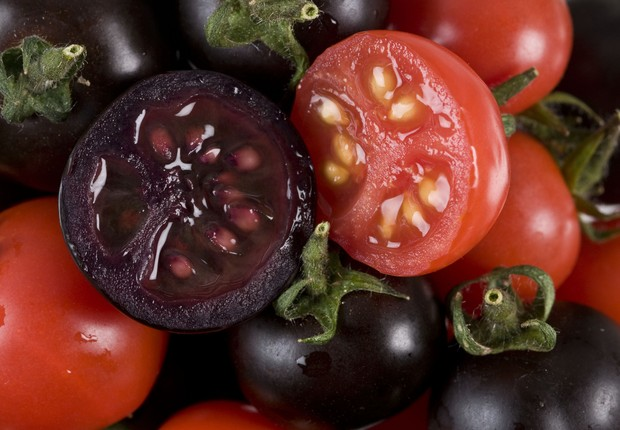 Image result for semi rotten tomato