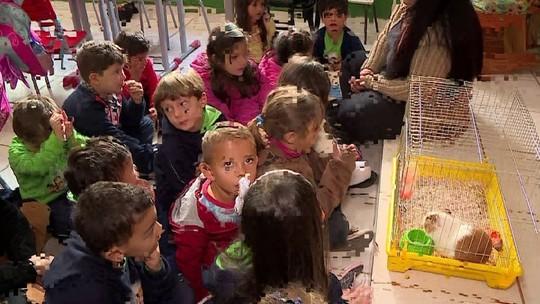 Porquinho da Índia incentiva leitura em escola de Barbacena
