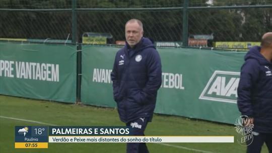 Confira como andam os times paulistas no Brasileirão
