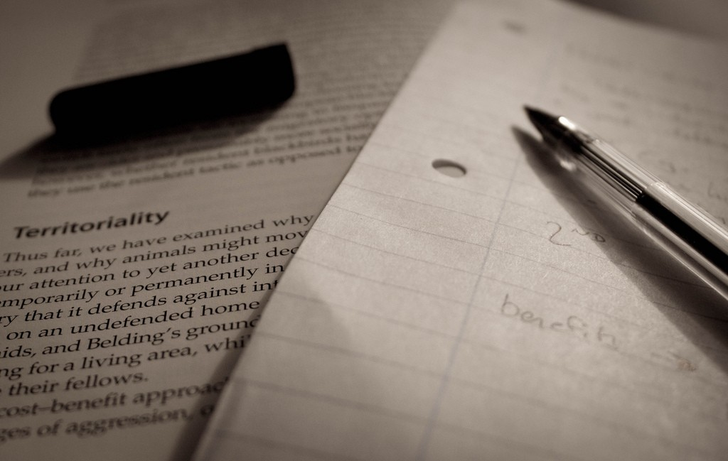 Veja algumas formas de se preparar para resolver as questões de história do Enem (Foto: Flickr/Luke Hayter)