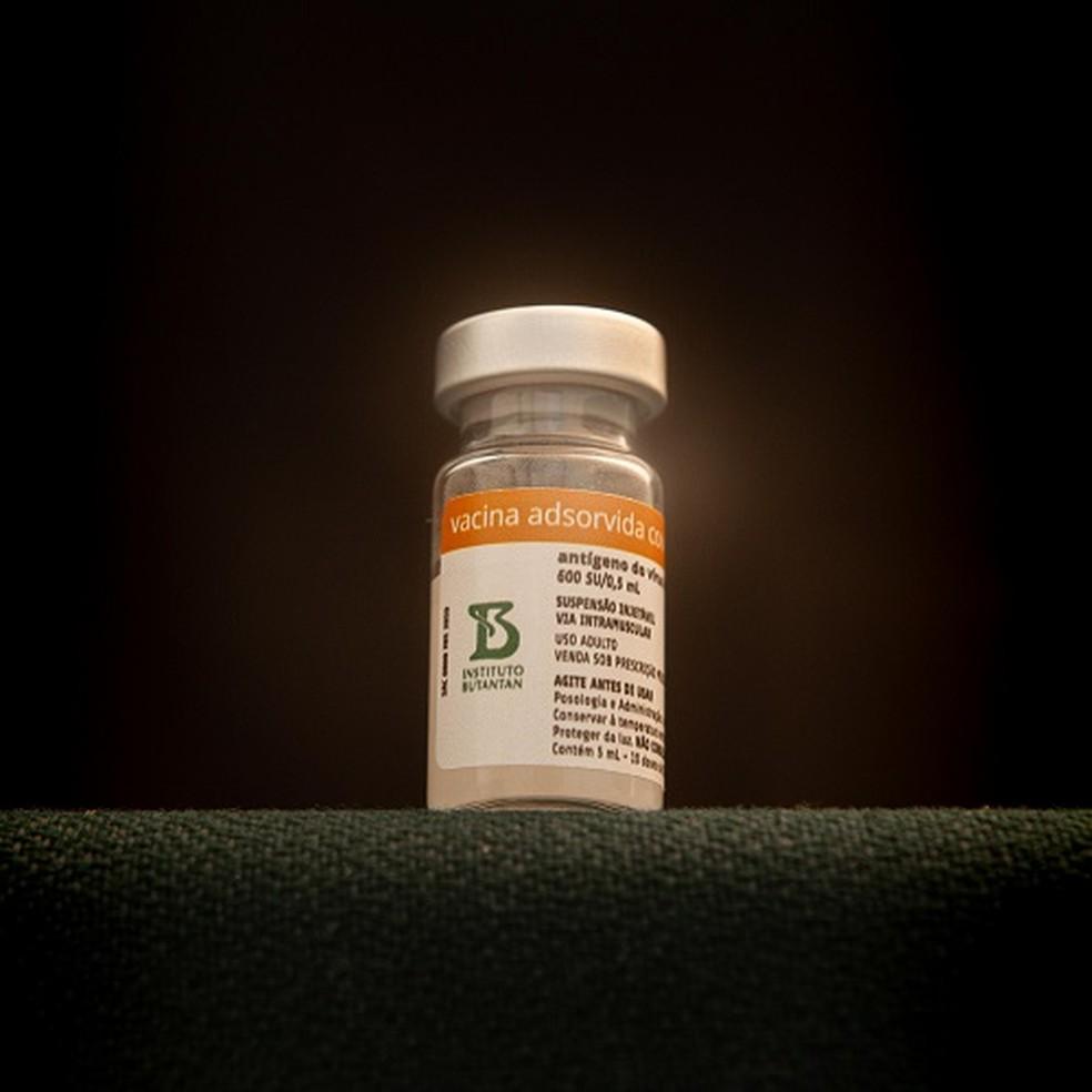 Frasco da CoronaVac, vacina contra o coronavírus produzida pelo Instituto Butantan  — Foto: Divulgação/Butantan