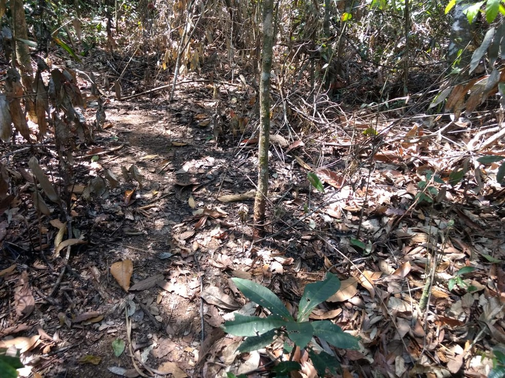 Ossada foi encontrada enterrada em uma área de difícil acesso entre Miracema e a cidade de Palma (MG) — Foto: Divulgação/Polícia Civil