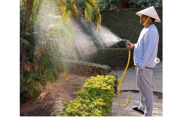 O cantor tem uma horta de 30m com plantação de alface, berinjela, couve, abacaxi (Foto: Reprodução/Instagram)
