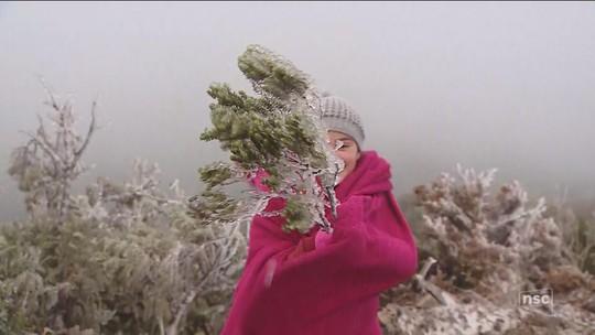 Com temperaturas negativas e coberta de gelo, Urupema faz a festa dos turistas