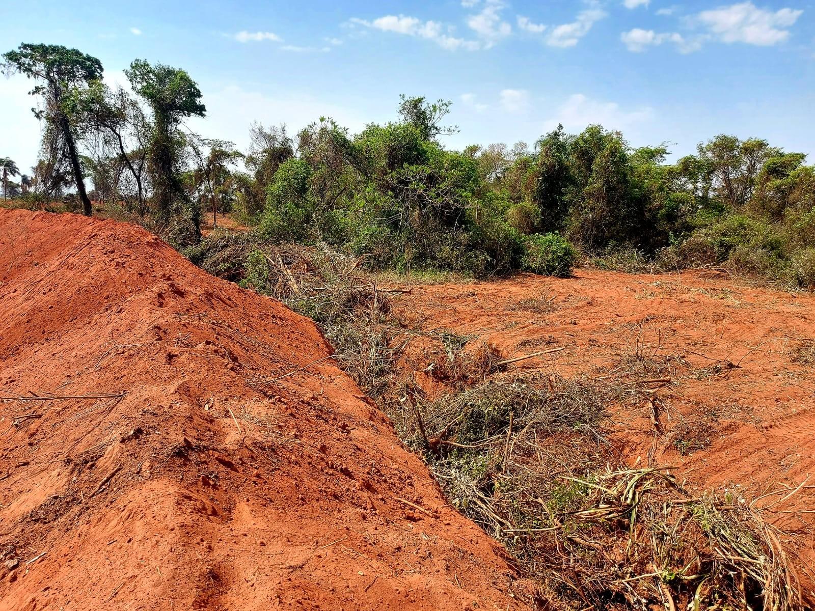 Quase R$ 560 mil em multas por desmatamento são aplicadas em desfavor de fazendeiro e empresas