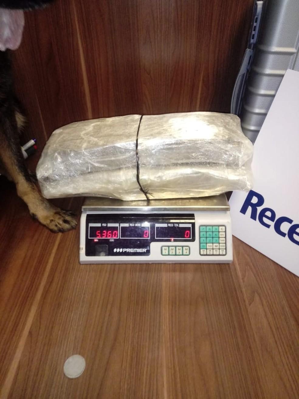 Receita Federal em Manaus apreende R$ 1,3 milhão em mercadorias e 44 kg em drogas ilícitas — Foto: Divulgação/Receita Federal