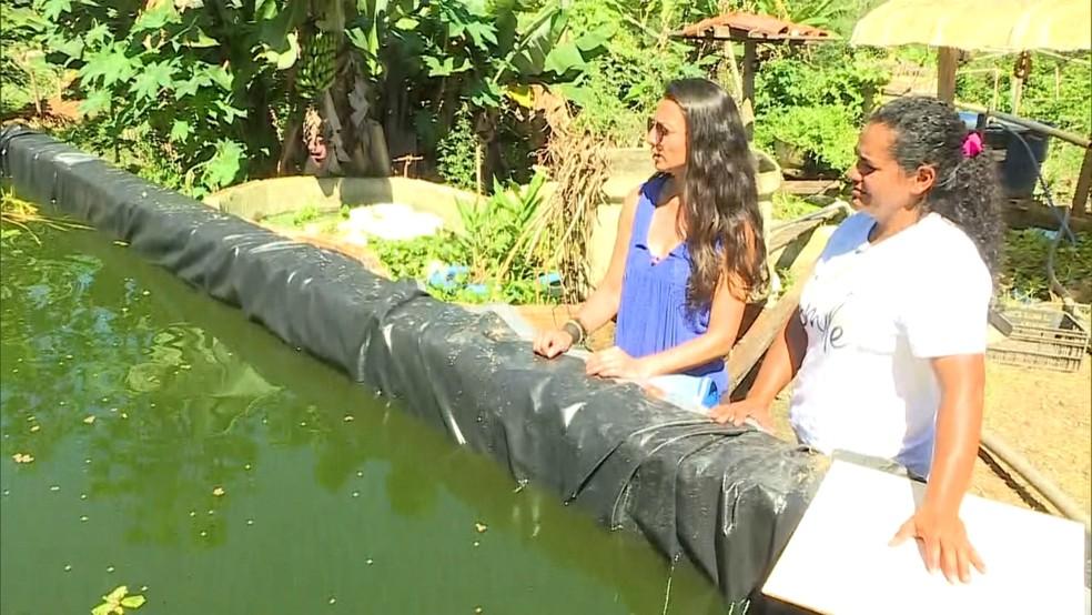 Maria Betânia costumava vender 2 toneladas de peixe na véspera da Semana Santa. Em 2019, não vendeu nenhum. — Foto: Reprodução/TV Globo