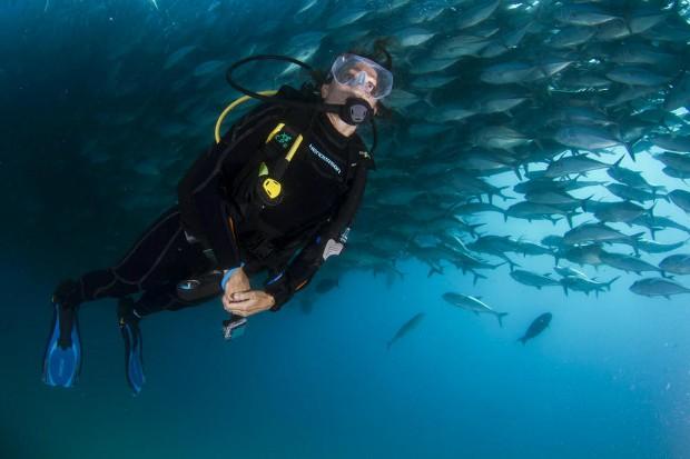 Céline Cousteau (Foto: Divulgação)
