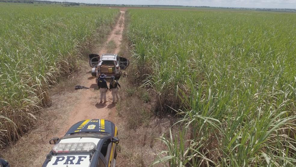 PRF apreende mais de uma tonelada de maconha na BR-158, em Paranaíba. — Foto: PRF/Divulgação