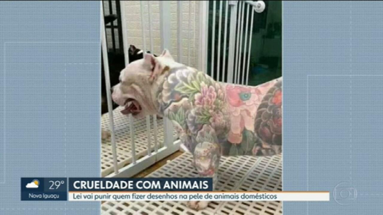 Lei vai punir quem fizer tatuagem em animais domésticos